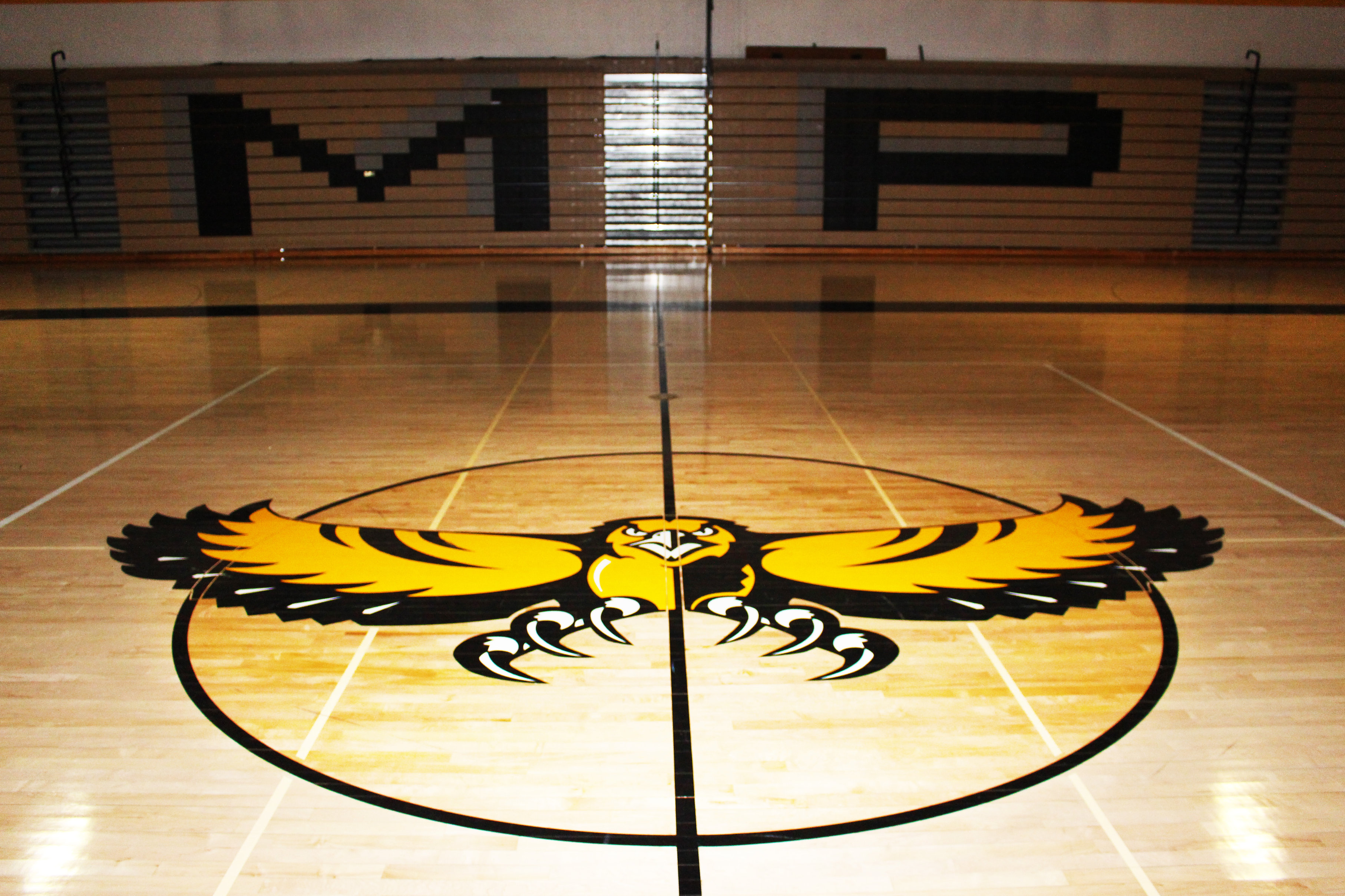 Golden hawk painted on the Gym floor